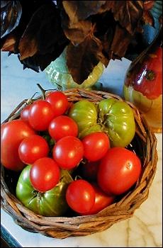 misc.tomatoes
